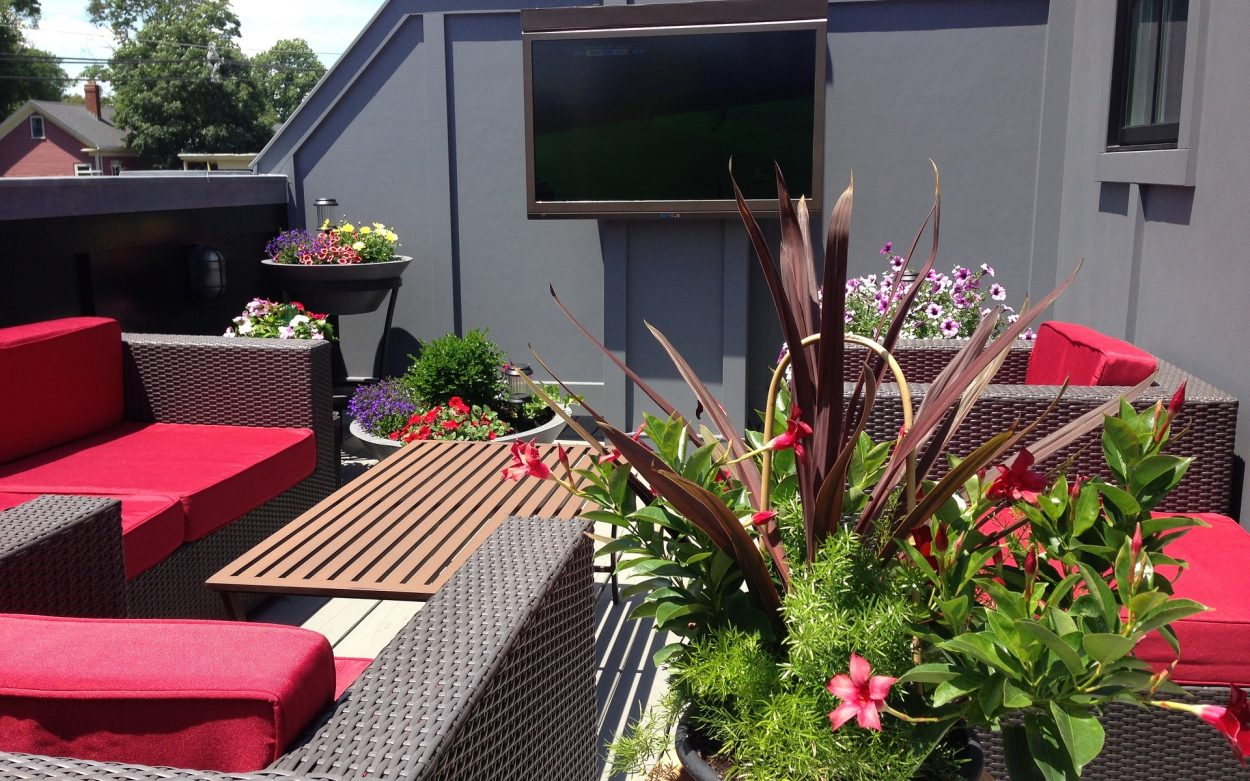 permanent outdoor cinema in your garden